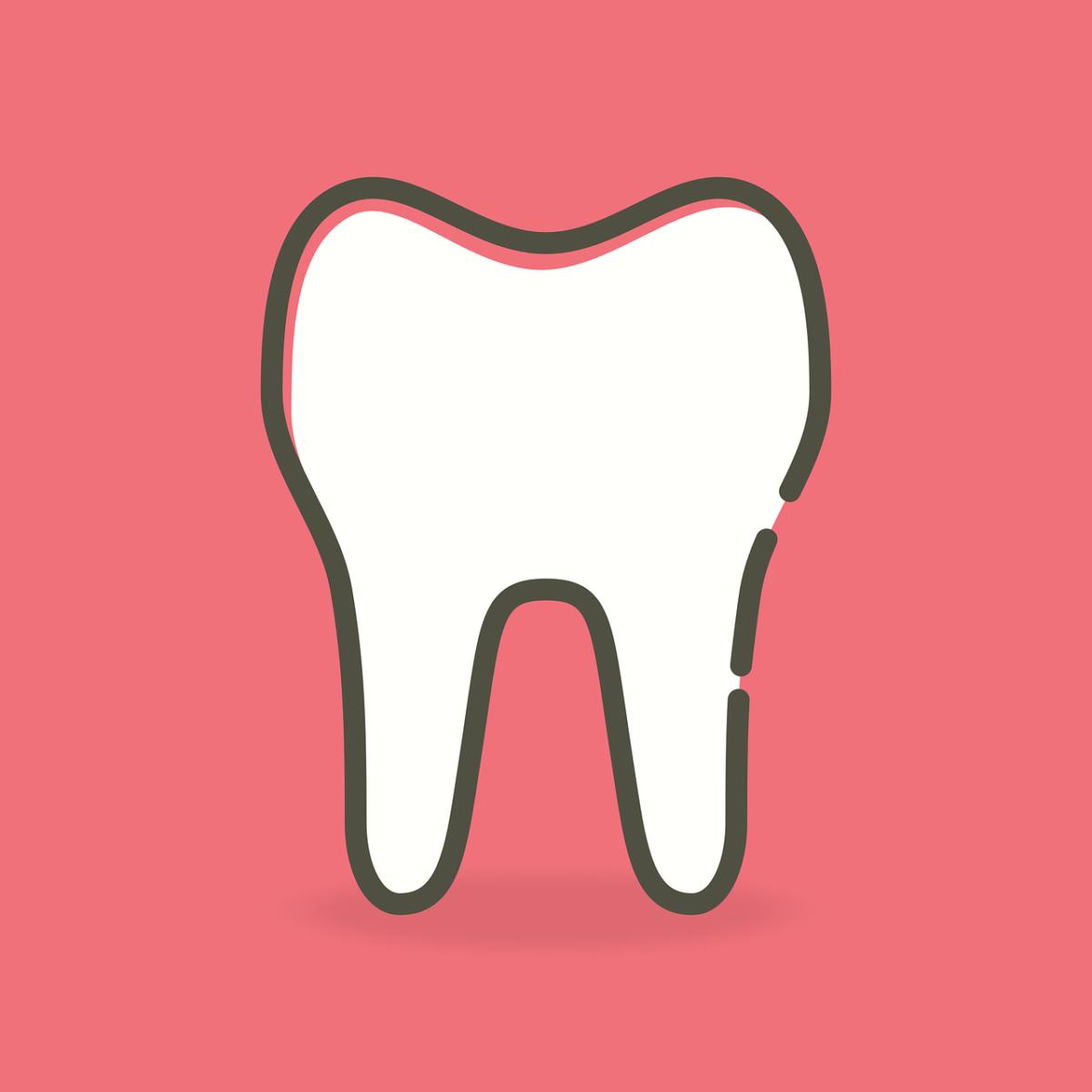 Śliczne zdrowe zęby także olśniewający uroczy uśmieszek to powód do zadowolenia.